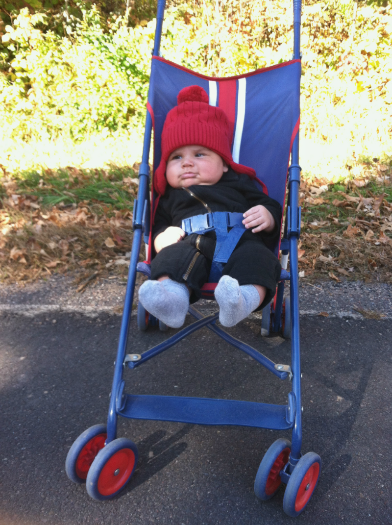 Max in the stroller